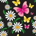 Seamless pattern on a black background with chamomiles and butterflies picture is presented Stock Photos