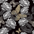 Seamless pattern with blooming roses and butterfli butterflies on black background Stock Images