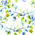 Seamless pattern with blossoming tree brunch watercolor illustration Stock Photography