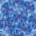 Seamless pattern with blue cornflower Royalty Free Stock Images