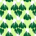 Seamless pattern with bok choi, also pak-choi, Chinese kale.