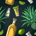 Seamless pattern of bottle, glass tequila, salt, cactus and lime