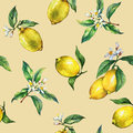 The seamless pattern of the branches of fresh citrus fruit lemons with green leaves and flowers