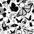 Seamless pattern with butterflies Stock Images