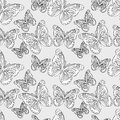Seamless pattern  butterflies Stock Photography