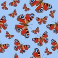 Seamless pattern with butterflies peacock eye. Burgundy butterflies on a blue background. Vector image
