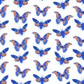 Seamless pattern with butterfly cicadas sketch, lilac blue navy orange isolated on white background. simple art. Can be used for Royalty Free Stock Photo