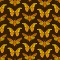 Seamless pattern with butterfly cicadas sketch, yellow orange mustard olive green contour on dark brown background. simple art. Royalty Free Stock Photo