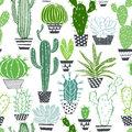 Seamless pattern with cactuses and succulents.