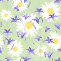 Seamless pattern with camomiles and bellflower Stock Photos