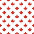Seamless pattern of Canada country flag symbol maple leaf.