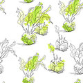 Seamless pattern with celery Stock Photography
