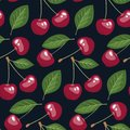Seamless pattern with cherries and leaves on dark background. Royalty Free Stock Photo