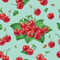 Seamless pattern. Cherries and leaves on a light background. Royalty Free Stock Photo