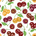 Seamless pattern with cherries on white background Royalty Free Stock Photo