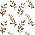 Seamless pattern with cherry tree branches, flowers, leaves and berries