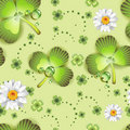 Seamless pattern with clover Stock Photography