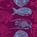 Seamless pattern with collection of tropical fish.Vintage set of hand drawn marine fauna.Vector illustration in line art style. Royalty Free Stock Photo
