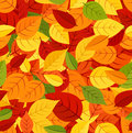 Seamless pattern with colored autumn leaves. Vecto Stock Images