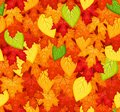 Seamless pattern with colored autumn leaves. Vecto Stock Photography