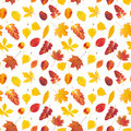 Seamless pattern with colorful autumn leaves Royalty Free Stock Photo