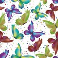 Seamless pattern, colorful butterflies