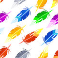 Seamless pattern with colorful Feather