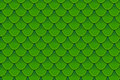 Seamless pattern of colorful green fish scales. Fish scales, dragon skin, Japanese carp, dinosaur skin, pimples, reptile