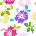 Seamless pattern with colorful hibiscus flower hawaii on white background Royalty Free Stock Photo