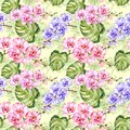 Seamless pattern. Colorful orchid flowers with outlines and large green monstera leaves on light green background.