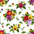 Seamless pattern with colorful pansy flowers and leaves on white Royalty Free Stock Image
