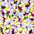 Seamless pattern with colorful pansy flowers. Vector illustration. Royalty Free Stock Photo
