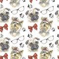Pattern - companion dog Royalty Free Stock Photo