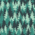 Seamless pattern coniferous forest green Royalty Free Stock Photography