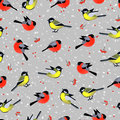 Seamless pattern with cute birds bullfinches and tits in winter vector texture for wallpapers fills web page Stock Photo
