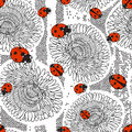 Seamless pattern with dandelions and ladybirds. Royalty Free Stock Photo