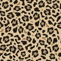 Seamless pattern of dark and light brown spots imitating the skin of a leopard. Royalty Free Stock Photo