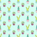 Seamless pattern with different green cacti in multi-colored pots