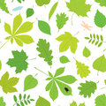Seamless pattern of different tree leaves and insects