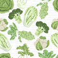 Seamless pattern with different varieties of cabbage Royalty Free Stock Photo