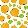 Seamless pattern elegant with tasty quince fruits for your design Stock Photography