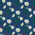 Seamless pattern embroidered stitch daisy flowers and ladybugs on a blue background. Vector