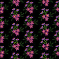 Seamless pattern with embroidery stitches imitation little flowe