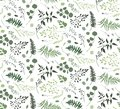 Seamless pattern of Eucalyptus palm fern different tree, foliage