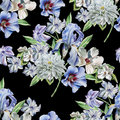 Seamless pattern with flowers. Chrysanthemum. Iris. Hyacinth. Watercolor illustration.