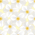 Seamless pattern with flowers daffodils Royalty Free Stock Photography