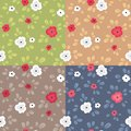 Seamless pattern with flowers plain vector in four color variations Stock Photo