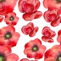 Seamless pattern with flowers poppies watercolor
