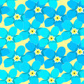 Seamless pattern of forget-me-alpine a wild flower vector illu