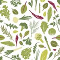 Seamless pattern with fresh green plants, vegetables, salad leaves and herbs on white background. Backdrop with healthy